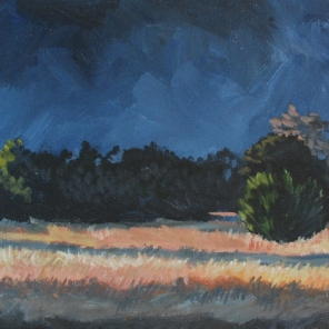 "Deep Afternoon Light (acrylic) 24"" x 8"""
