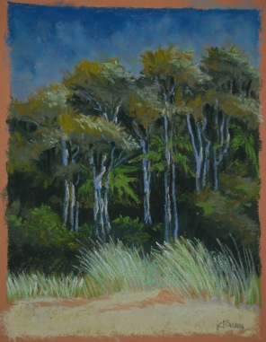 "Totaranui Breeze - 10"" x 13"""
